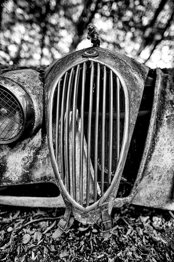 Auto 06